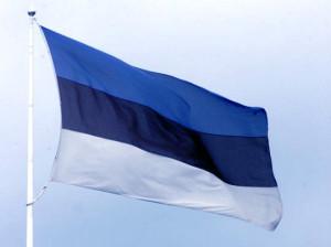 Flag_Estoniya_310113